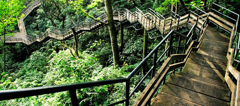 Thenmala Ecotourism, Kerala Tourism