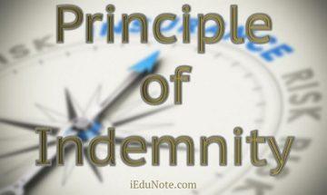 principle-of-indemnity